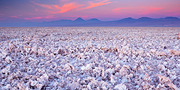 Saltflat Sunset