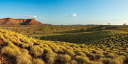 Spinifex Hills
